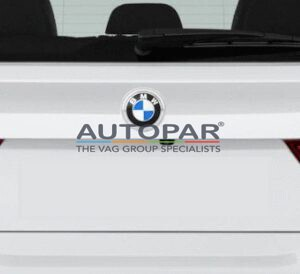 BMW knipperlicht autopar dynamisch